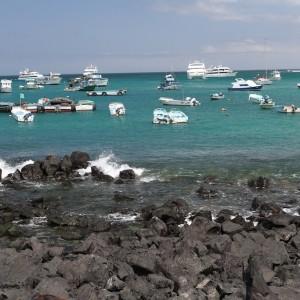 Photos Galapagos 10