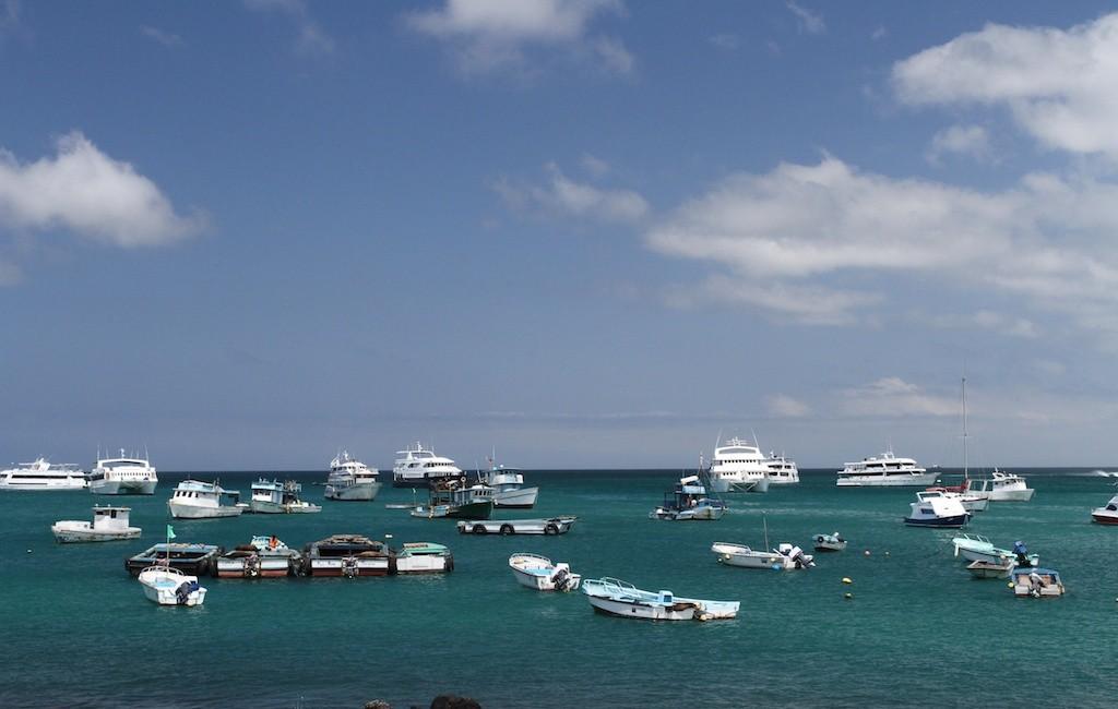 Photos Galapagos 11