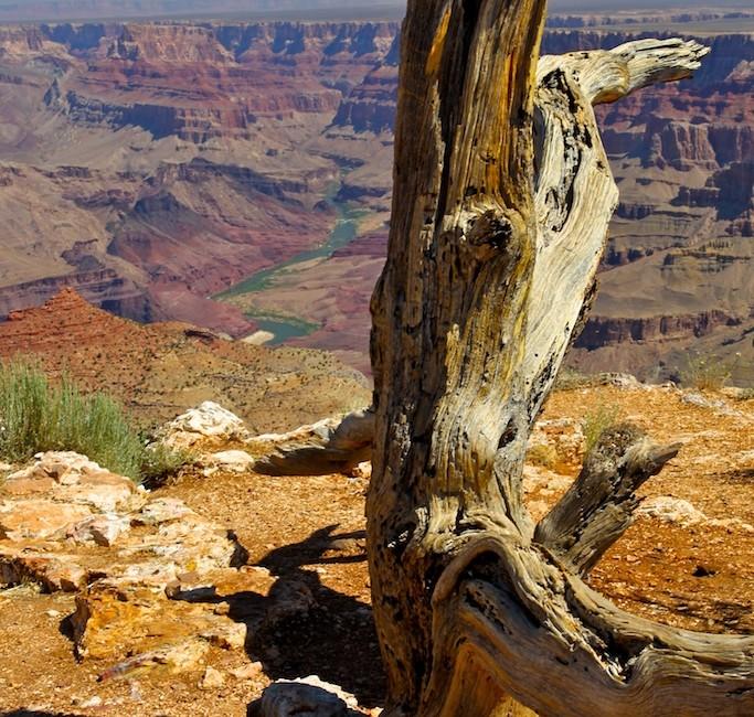Photos Grant Canyon 2