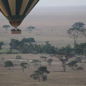 Photos Serengeti 11