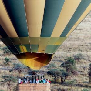 Photos Serengeti 14