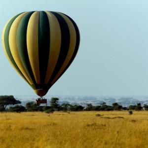 Photos Serengeti 15