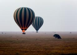 Photos Serengeti 2