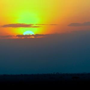 Photos Serengeti 4