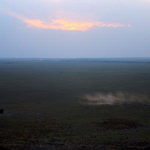 Photos Serengeti 44