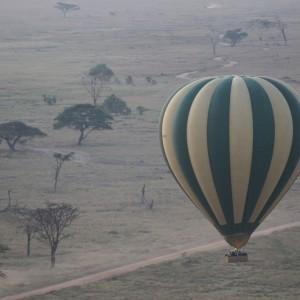 Photos Serengeti 6