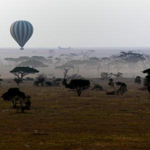Photos Serengeti 8