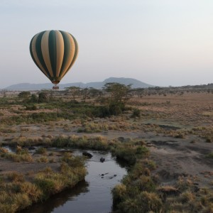 Photos Serengeti 9