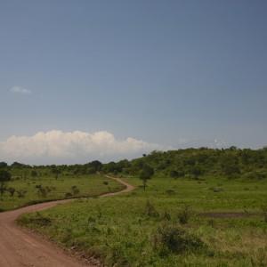 Photos Tarangire & Arusha 36