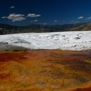 Photos Yellowstone 42