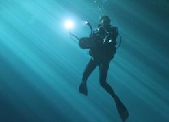 Photos Diving Cenotes 29