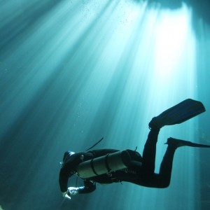 Photos Diving Cenotes 33
