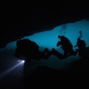 Photos Diving Cenotes 35