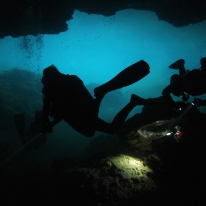 Photos Diving Cenotes 36