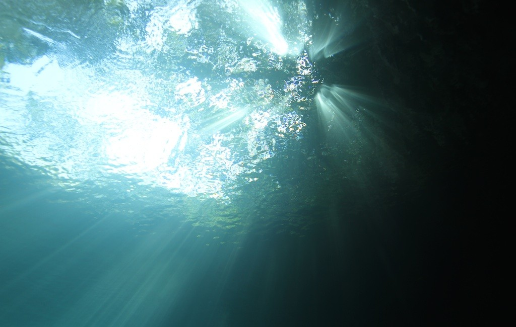 Photos Diving Cenotes 9