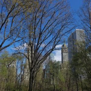 Photos New York 47