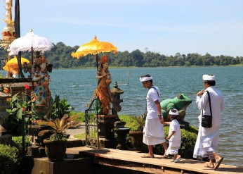 Bali terrestre 11