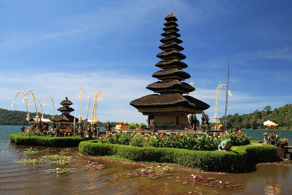 Bali terrestre 12