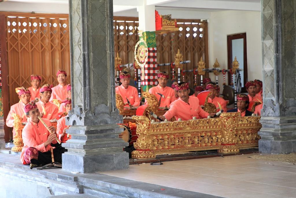 Bali terrestre 15