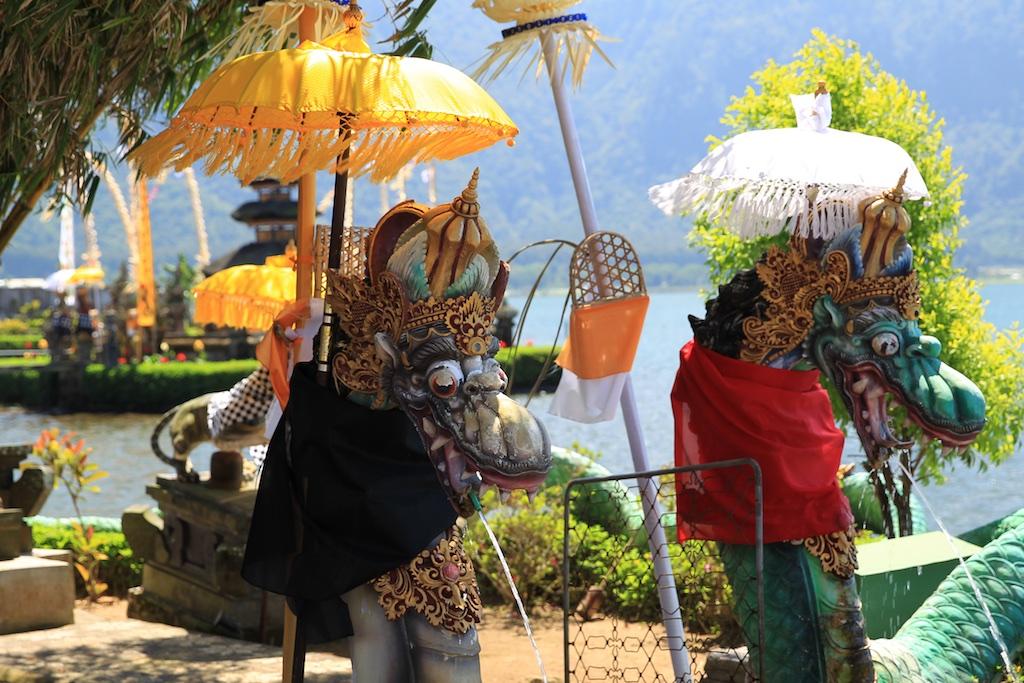 Bali terrestre 17