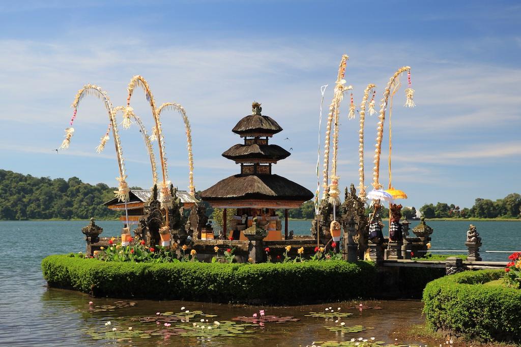 Bali terrestre 8