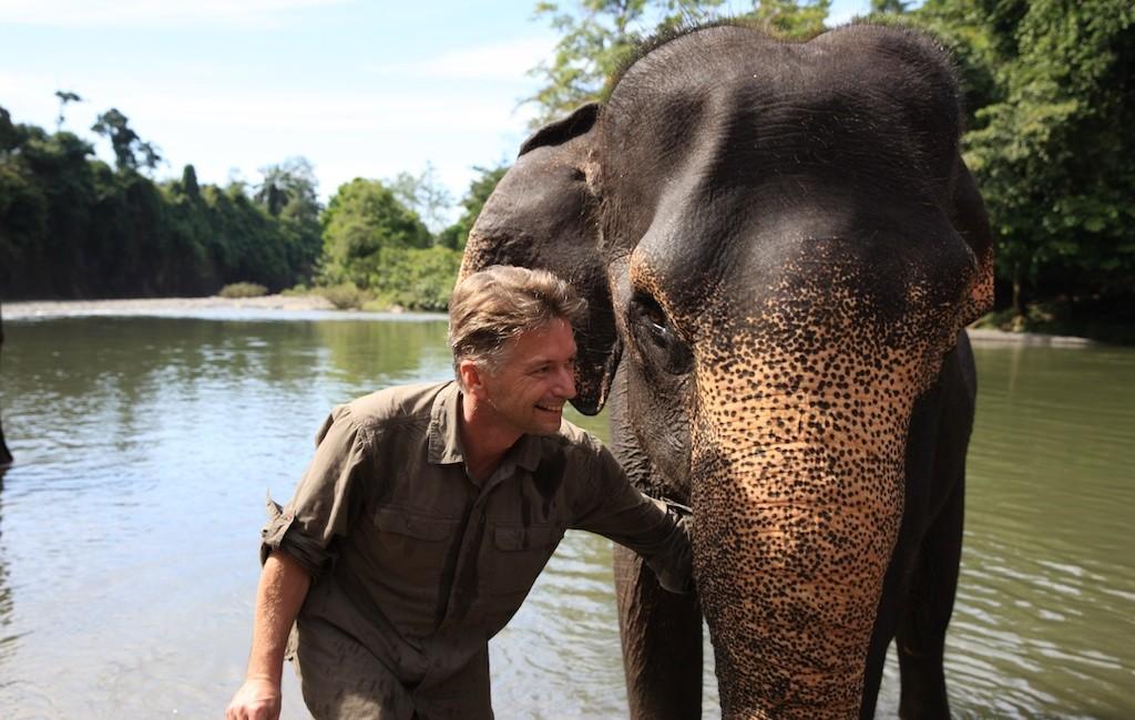 Sumatra 42