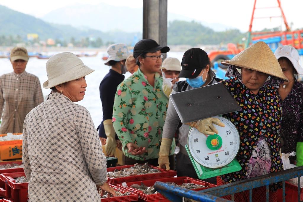 Vietnam 19