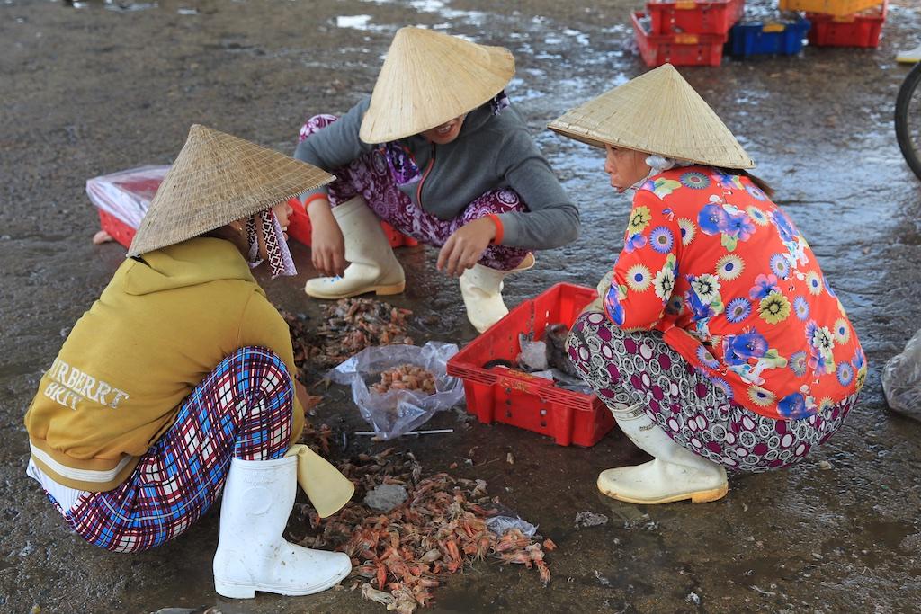 Vietnam 25